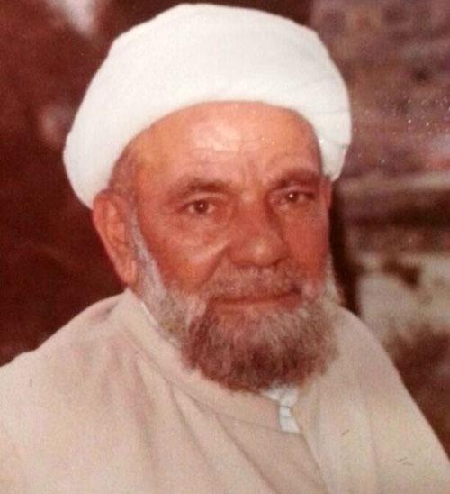 الشيخ علي التقي الفقيه